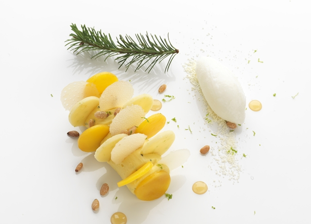 Mango crème douglas-fir and yoghurt sorbet, white cookie dough