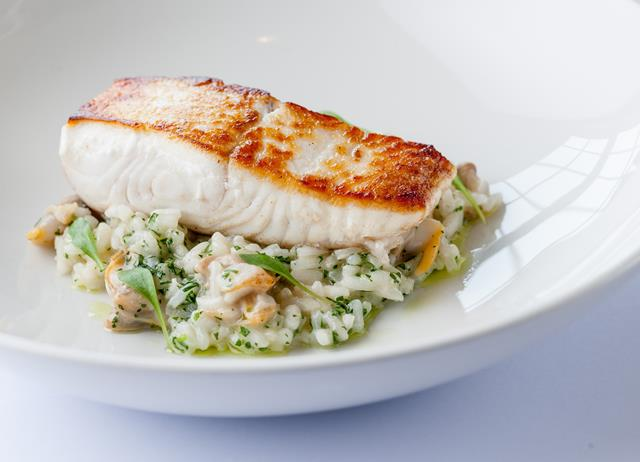 Alaska halibut with cockle risotto