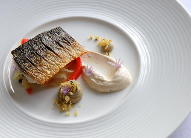 Pan-fried mackerel with fennel and pepper salad