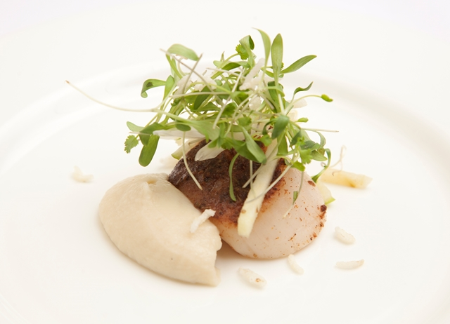 Spiced diver-caught Scottish scallops