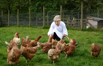 Image of Chef Frances Atkins with a brood of chickens