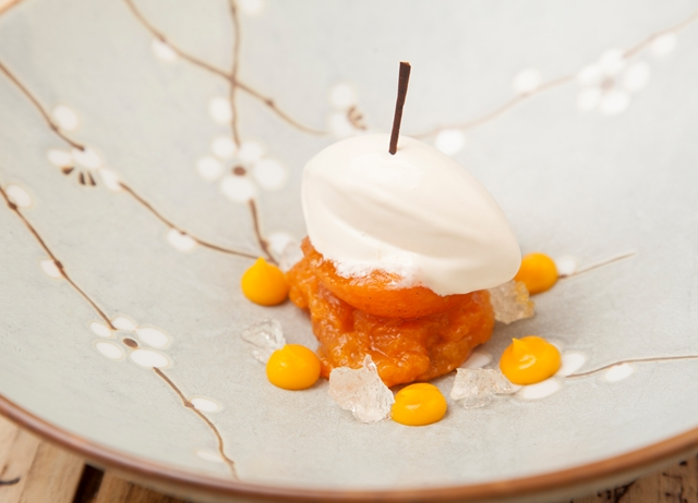 Apricot ice cream, compote and purée