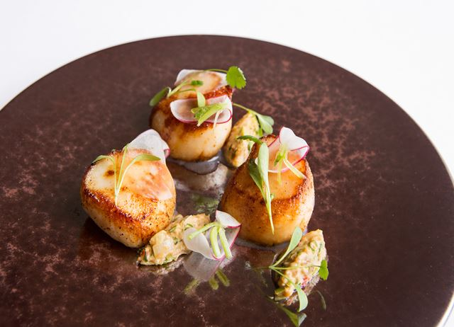 Scallops, radish, peanut and lime