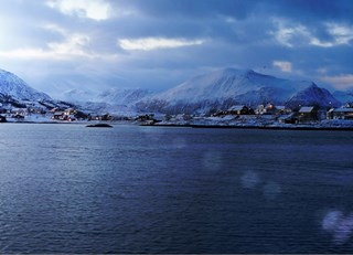 Skrei: Norway's jewel of the sea