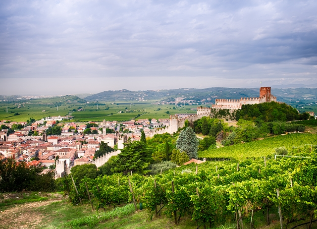 The wines of Veneto