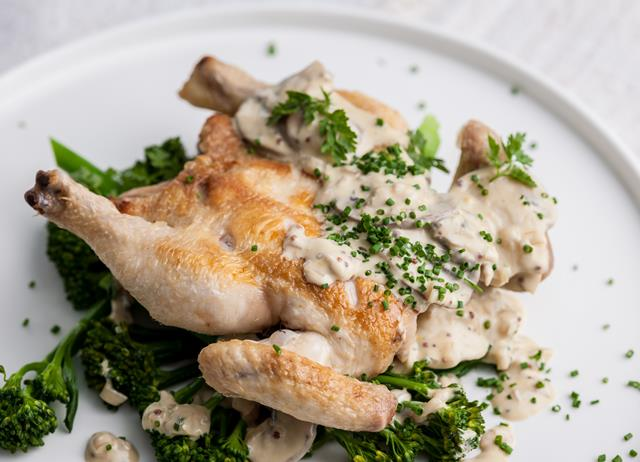 Poussin with mustard sauce and mushrooms